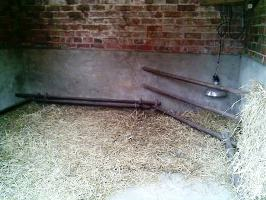 farrowing bars