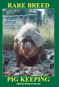 rare breed pig keeping cover